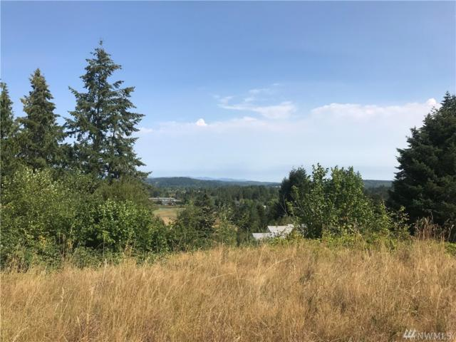 0 Cooks Hill Rd, Centralia, WA 98531 (#1347398) :: Real Estate Solutions Group