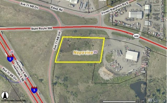 0-XX Hwy 508, Napavine, WA 98532 (#1347867) :: Canterwood Real Estate Team