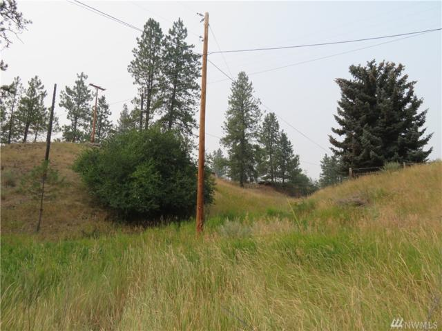 0-TBD Kauffman St, Republic, WA 99166 (#1347922) :: Homes on the Sound