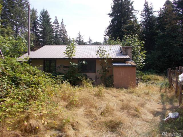 0 Chipmunk Place, Packwood, WA 98361 (#1348039) :: Homes on the Sound