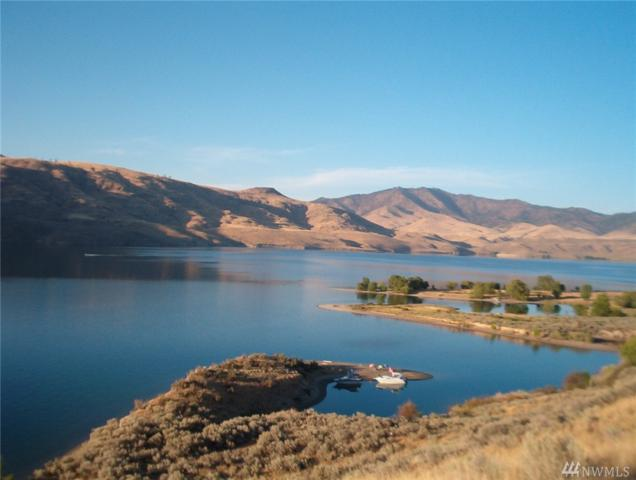 4940 Plum Point E, Grand Coulee, WA 99133 (#1348200) :: Homes on the Sound