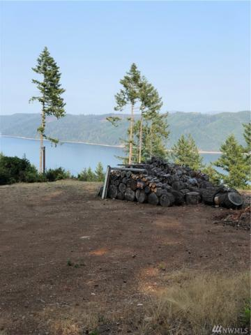 711 Colony Surf Dr, Lilliwaup, WA 98555 (#1348344) :: Homes on the Sound