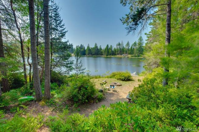11310 Alpine Drive SW, Port Orchard, WA 98367 (#1348639) :: Better Properties Lacey