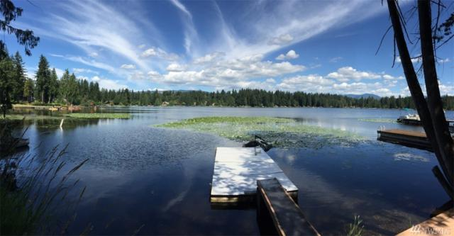 10916 W Lake Joy Dr NE, Carnation, WA 98014 (#1349071) :: Better Properties Lacey