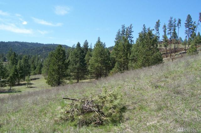 1 Settle Lot#1, Republic, WA 99166 (#1349337) :: Homes on the Sound