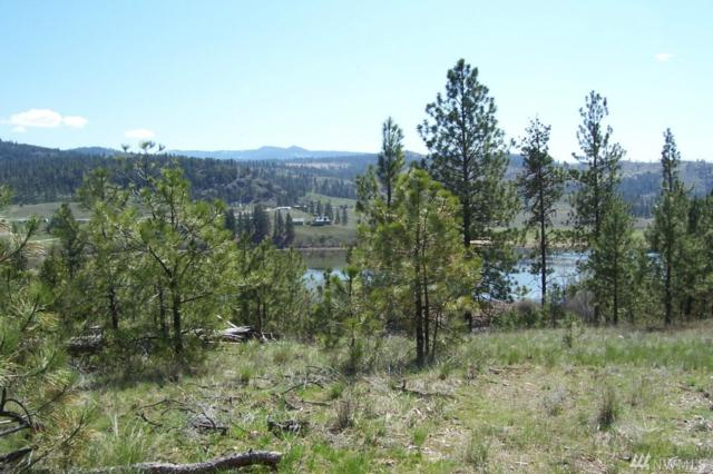 4 Settle Lot#4, Republic, WA 99166 (#1349376) :: Homes on the Sound