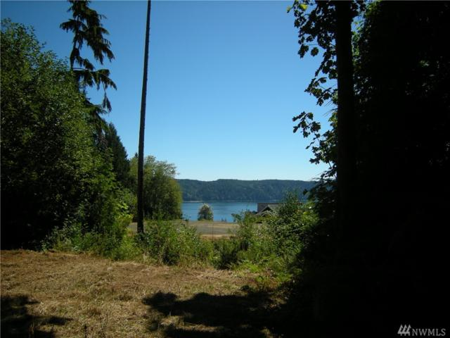 0 Lot 11 Luci's Wy, Hoodsport, WA 98548 (#1349421) :: Real Estate Solutions Group