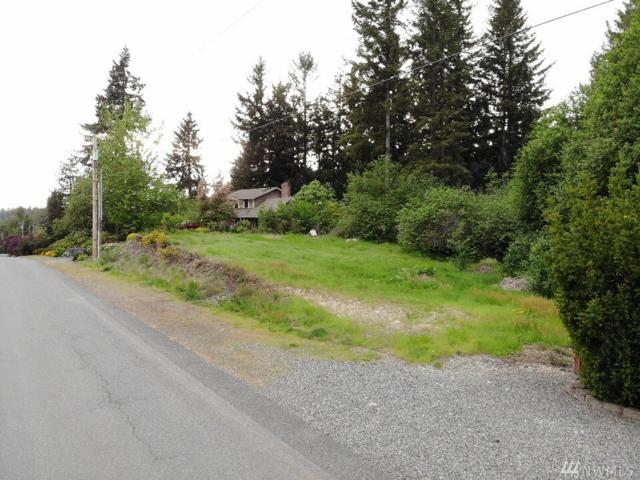 13203 115th St E, Puyallup, WA 98374 (#1349718) :: Homes on the Sound