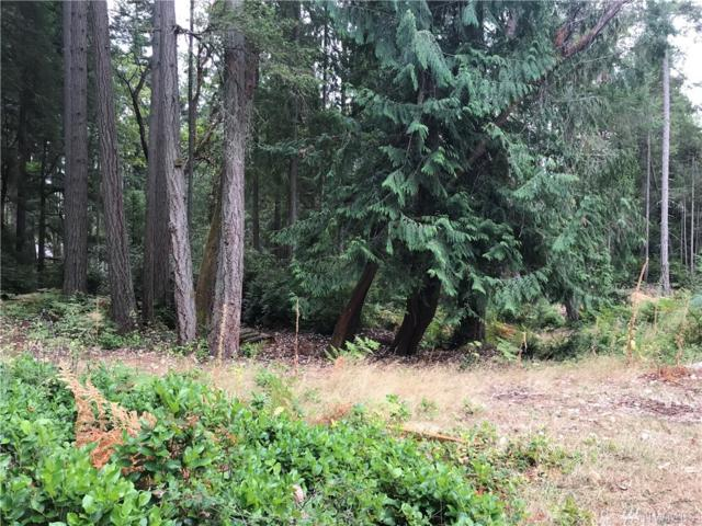 10112 109th Av Ct, Anderson Island, WA 98303 (#1349886) :: Better Homes and Gardens Real Estate McKenzie Group