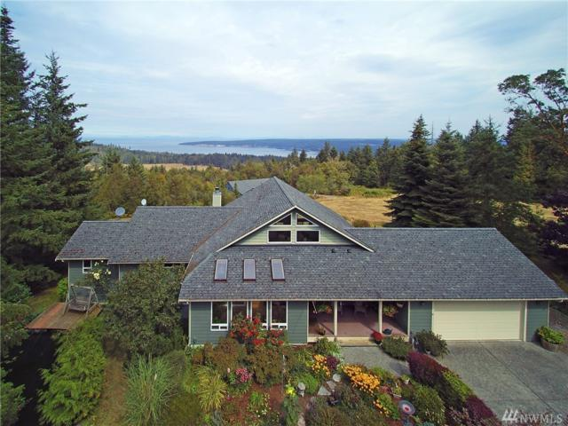 2481 Palo Alto Rd, Sequim, WA 98382 (#1350188) :: Homes on the Sound