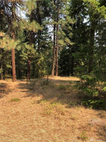 78-XX Lower Peoh Point (Lot 4) Rd, Cle Elum, WA 98922 (#1350204) :: Real Estate Solutions Group