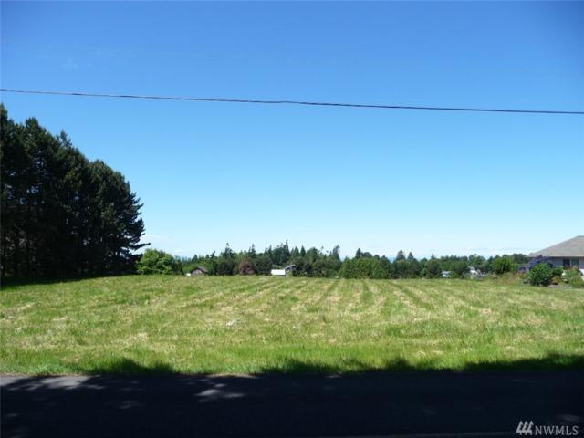 0 Lotzgesell Rd, Sequim, WA 98382 (#1350226) :: Homes on the Sound