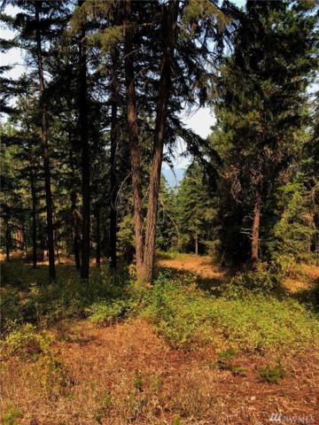 76-XX Lower Peoh Point Rd (Lot 1) Rd, Cle Elum, WA 98922 (#1350257) :: Real Estate Solutions Group