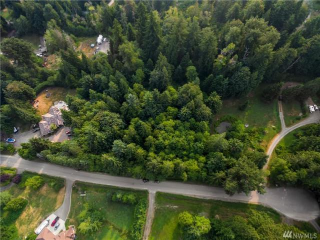 172-xx 453rd Ave SE, North Bend, WA 98045 (#1350356) :: Real Estate Solutions Group