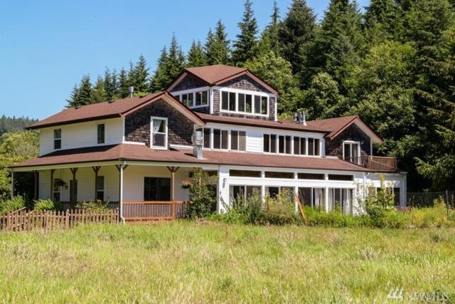 53 Maki Rd, Skamokawa, WA 98647 (#1350738) :: Ben Kinney Real Estate Team