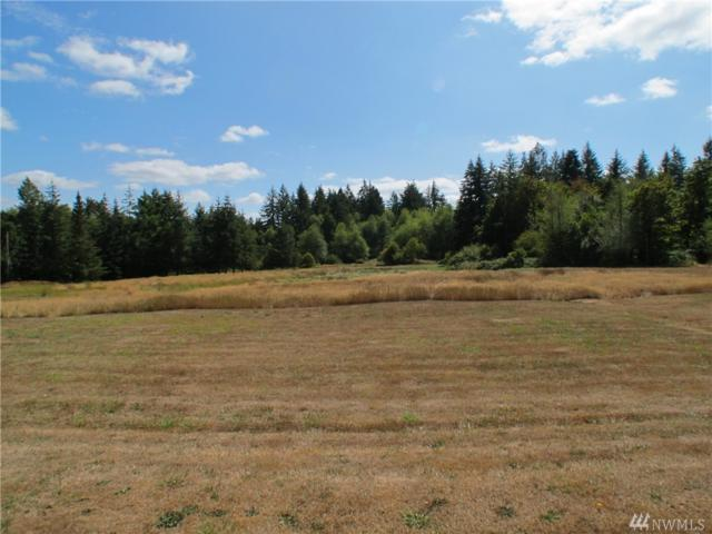 3239 137th Lane SW, Tenino, WA 98589 (#1351035) :: Kimberly Gartland Group