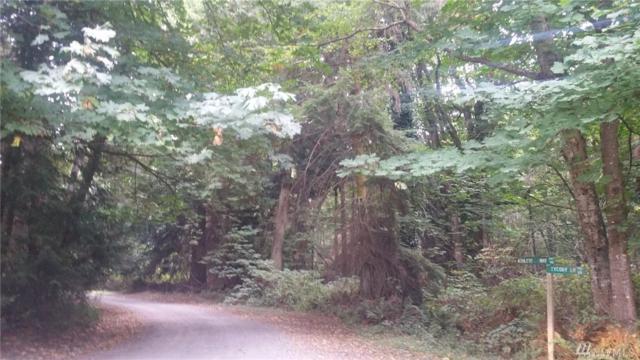 1 Ashleys Wy, Camano Island, WA 98282 (#1351928) :: Homes on the Sound
