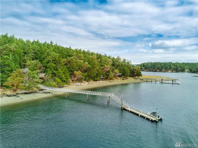 45 Driftwood Shores, Henry Island, WA 98250 (#1351949) :: Homes on the Sound