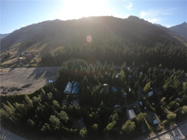 0-xx Kearny Dr, Snoqualmie Pass, WA 98068 (#1352047) :: Kimberly Gartland Group