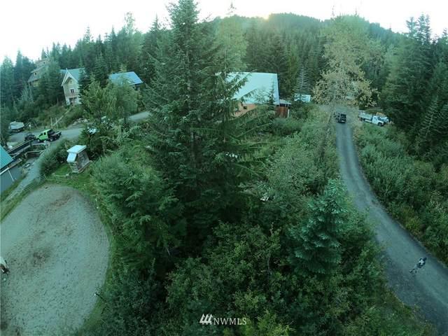 11 Olson Dr, Snoqualmie Pass, WA 98068 (#1352051) :: The Shiflett Group