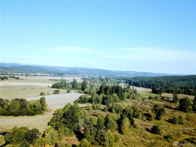32646 Kahout Rd, Boistfort, WA 98538 (#1352130) :: Canterwood Real Estate Team