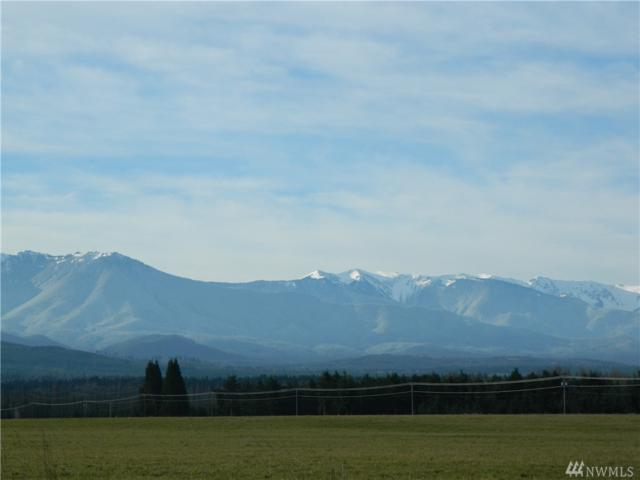 2-lot Harrier Wy, Sequim, WA 98382 (#1352203) :: Kimberly Gartland Group