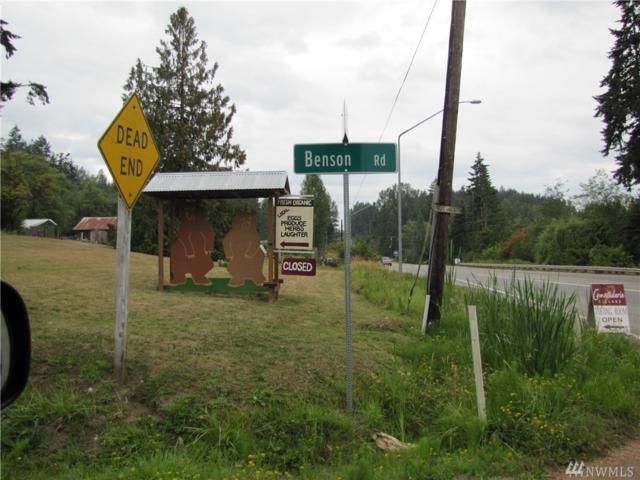 999 Benson Rd Lot 1, Port Angeles, WA 98363 (#1352325) :: Crutcher Dennis - My Puget Sound Homes
