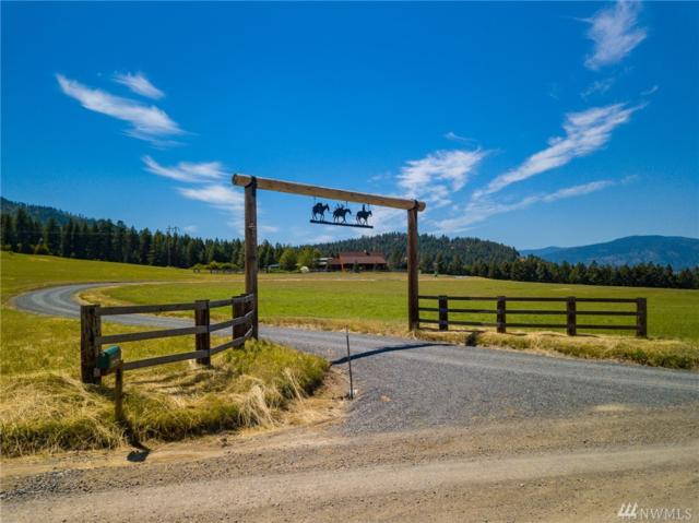 720 Deer Meadow Wy, Kettle Falls, WA 99141 (#1352551) :: The Kendra Todd Group at Keller Williams