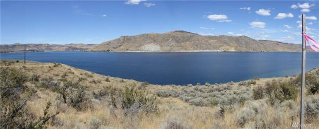 45501 Char Donnie Lane N, Grand Coulee, WA 99133 (#1352676) :: Homes on the Sound