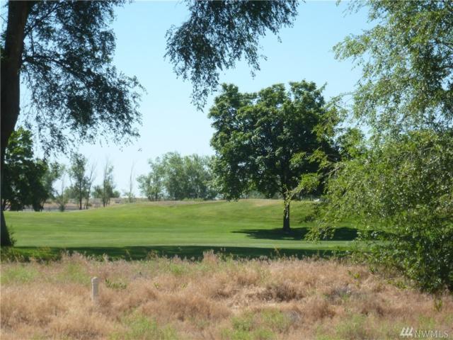 1315 Nanto Rd NE, Moses Lake, WA 98837 (MLS #1352723) :: Nick McLean Real Estate Group