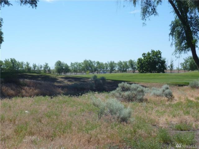 1331 NE Nanto Rd, Moses Lake, WA 98837 (#1352726) :: Alchemy Real Estate