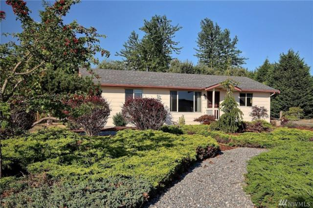 712 3 Crabs Rd, Sequim, WA 98382 (#1352875) :: Homes on the Sound