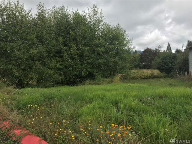 60 Glengate Lp, Cathlamet, WA 98612 (#1353149) :: Homes on the Sound