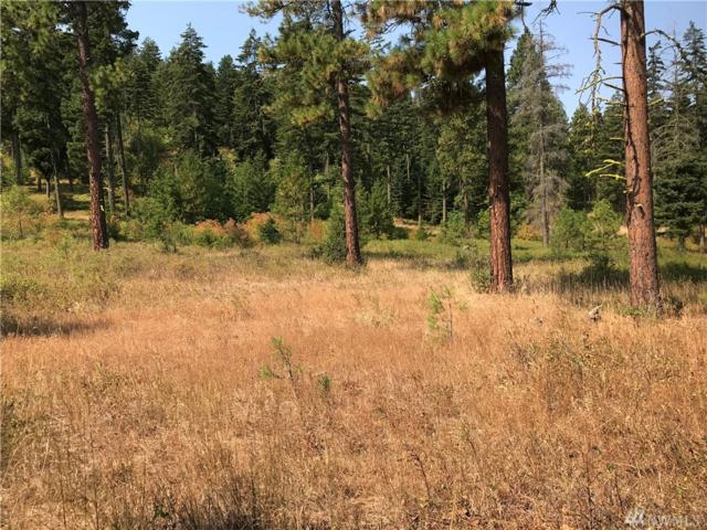 0-Lot 4D Hidden Valley Terr, Cle Elum, WA 98922 (#1353280) :: Icon Real Estate Group