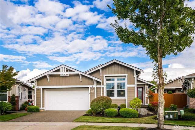 4204 Sentinel Dr NE, Lacey, WA 98516 (#1353293) :: Homes on the Sound