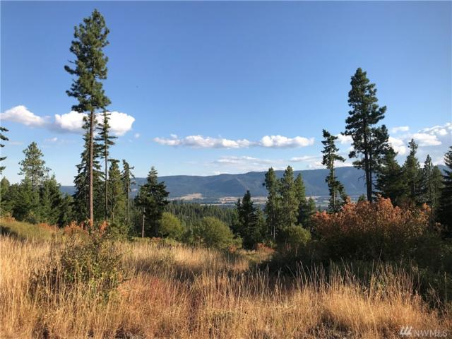 0-XXX Horizon Ridge Dr, Cle Elum, WA 98922 (#1353333) :: The Robert Ott Group