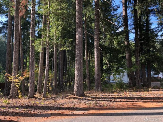 111 Maple Pl, Packwood, WA 98361 (#1353763) :: Homes on the Sound
