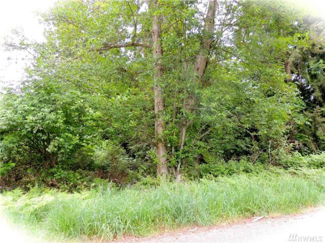 12 Hodges, Langley, WA 98260 (#1354299) :: Carroll & Lions