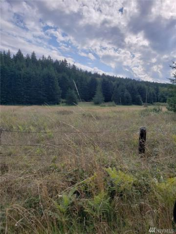 1900-Block Cape George Rd, Port Townsend, WA 98368 (#1354380) :: Real Estate Solutions Group