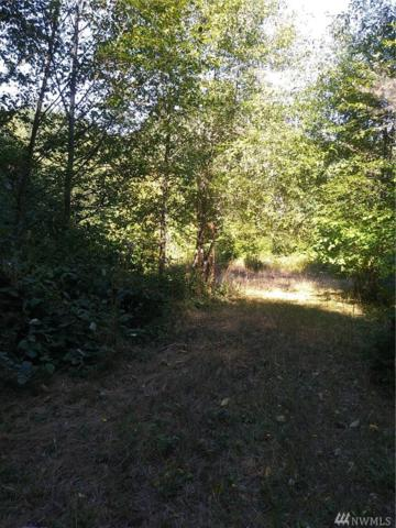 0 Maple Lane, Lilliwaup, WA 98555 (#1355345) :: Homes on the Sound