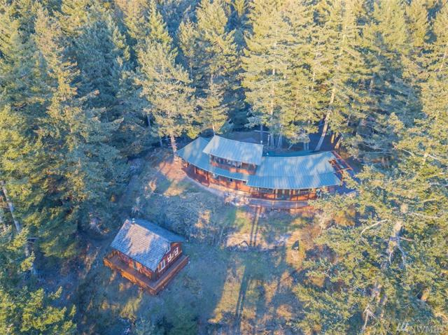 1294 Kahboo Hill Rd, Orcas Island, WA 98279 (#1355350) :: Icon Real Estate Group