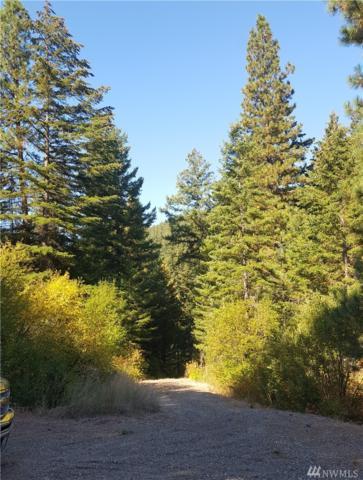 1141 Thornton Creek Lane, Cle Elum, WA 98922 (#1355538) :: The Craig McKenzie Team