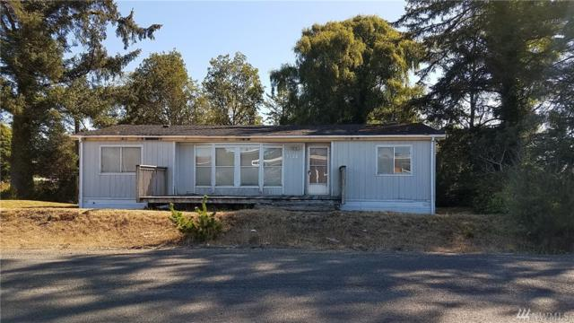 1602 254th Place, Ocean Park, WA 98640 (#1355573) :: Better Homes and Gardens Real Estate McKenzie Group