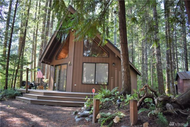 203 Mountain View Dr, Packwood, WA 98361 (#1355635) :: Homes on the Sound
