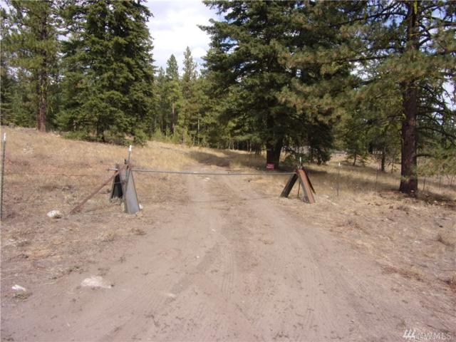 8-TBD Mineral Hill Rd, Conconully, WA 98819 (#1356072) :: Homes on the Sound