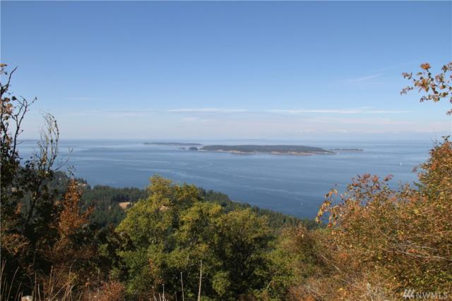 974 Wright Rd, Orcas Island, WA 98245 (#1357001) :: Costello Team