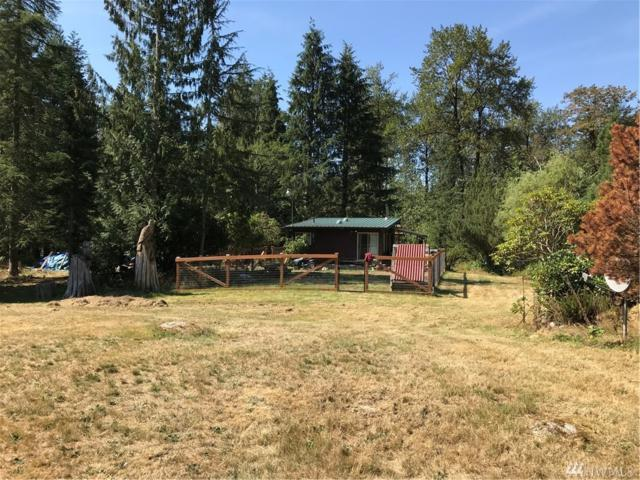 41901 150 St SE, Gold Bar, WA 98251 (#1357039) :: Homes on the Sound