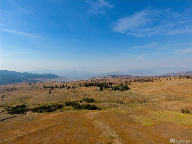 0 Tbd Rise Rd, Oroville, WA 98844 (#1357736) :: Homes on the Sound