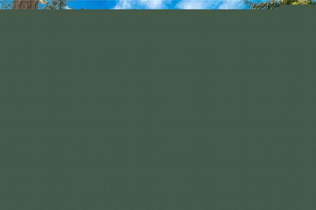 8838 Goldeneye Lane, Blaine, WA 98230 (#1358248) :: Homes on the Sound