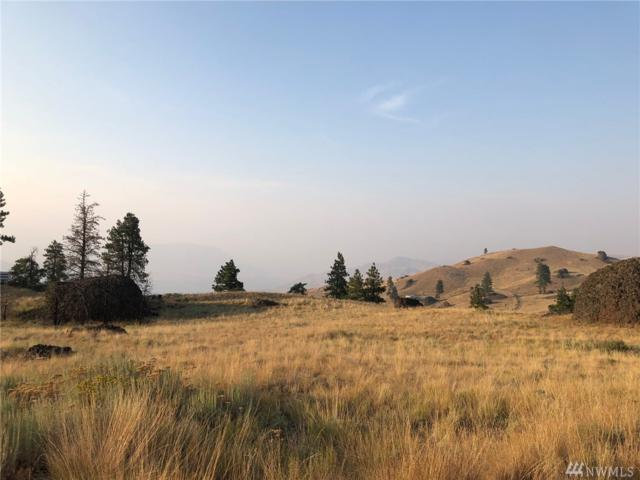 0-NNA Mcneil Canyon Rd., Orondo, WA 98830 (#1358478) :: Keller Williams Western Realty